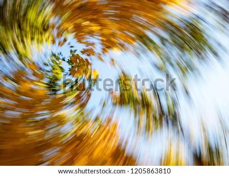 Vertigo, Dizzy, Tree impression, Illness, Swirl/Autumn Swirling Trees #1205863810