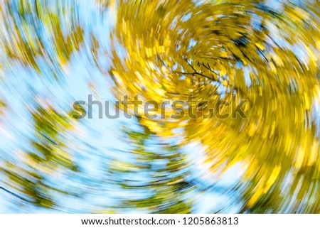 Vertigo, Dizzy, Tree impression, Illness, Swirl/Autumn Swirling Trees #1205863813