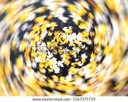 Vertigo, Dizzy, Tree impression, Illness, Swirl/Autumn Swirling Trees #1567375759