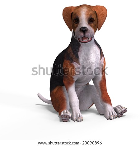 very cute young dog over white with Clipping Path
