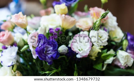 Very delicate bouquet of colorful eustomas. Pink, purple, white eustoma flower, illuminated by sunlight. Soft selective focus, eustoma close up, toning. Photo background #1348679732