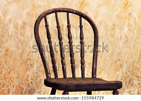 Very old chair with high definition on of its back , it is in a fall field of long grass.