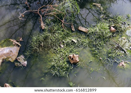 very polluted water with...