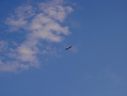 Very small and light propeller plane flying at high altitude, in the background of blue sky, view from bottom from the front, image