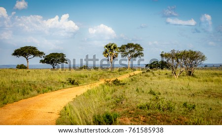 Very typical dirt road with a beautiful sky used for safari in Murchison Falls national park in Uganda. Too bad this place, lake Albert, is endangered by oil drilling companies