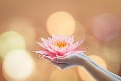 Vesak day, Buddhist lent day, Buddha's birthday, Buddha Purnima worshiping, and world human spirit concept with woman's hands holding water Lilly or lotus flower