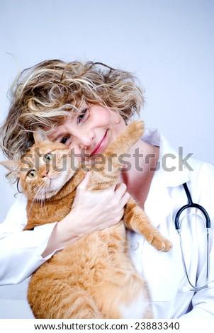 vet and cat