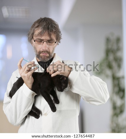 vet had injected kitten to the clinic