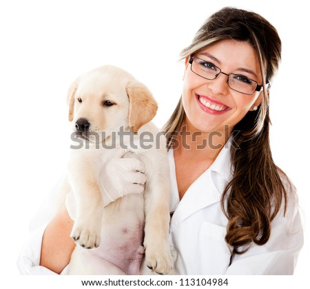 Vet holding a little dog - isolated over a white background