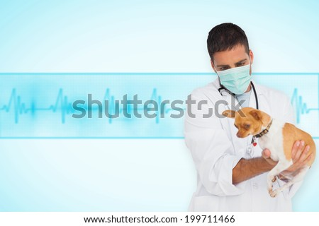 Vet in protective mask checking chihuahua against medical background with blue ecg line