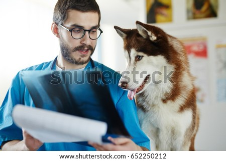 Vet showing x-ray image to his patient