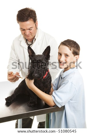 Veterinarian giving a shot to a little boy's Scotty dog.  White background.