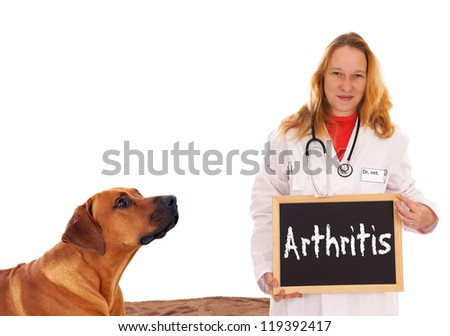 Veterinarian with dog and shield - Arthritis / Veterinarian