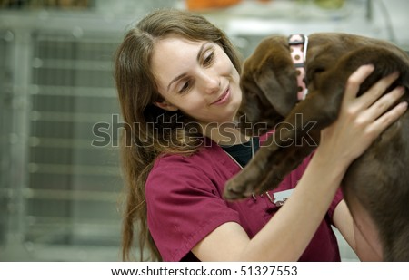 veterinary assistant moving a young patient