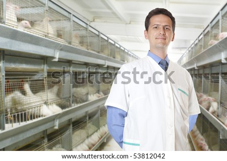 veterinary surgeon on eggs and chicken factory farm