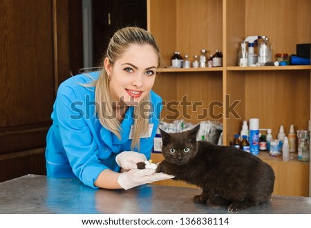 veterinary woman with cat in banian hospital