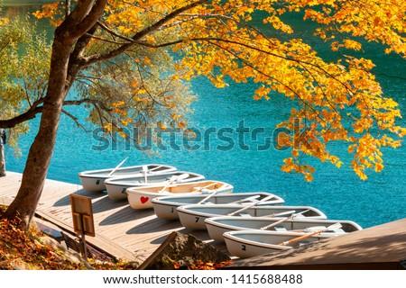 Vibrant autumn colors (foliage) at Goshiki-numa five colour pond. Row boat at port, Urabandai, Fukushima Prefecture, Japan