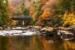 vibrant autumn photo taken in Swallow Falls state park in western maryland