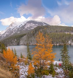 Vibrant orange Fall foliage seen alongside Lake Vermillon, Banff. The colors are outstanding. The backdrop of the snow-covered Canadian  Rockies, Blue sky and fluffy white clouds looks amazing.