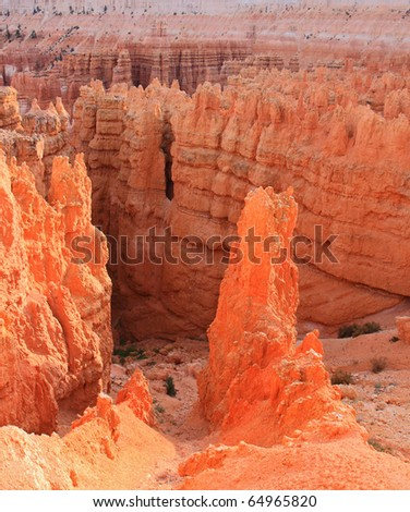 Vibrant spires of orange sandstone are abundant in Bryce Canyon National Park