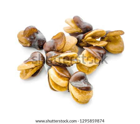 Vicia faba isolated on white background