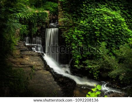 Vickery Creek trail GA