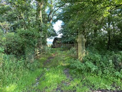 Victorian stone posts, and metal gate entrance, to a former residence, overgrown with, wild plants and trees on, Stump Cross Lane, Bolton by Bowland, UK