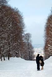 Vienna - alley from gardens of Schonbrun palace in winter, Austria