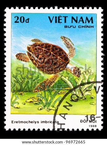VIETNAM - CIRCA 1988: A stamp printed in VIETNAM shows a Eretmochelys imbricata, series, circa 1988
