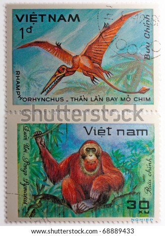 VIETNAM - CIRCA 1984: A stamp printed in Vietnam shows Rhamphorhynchus, series devoted to prehistoric animals, circa 1984