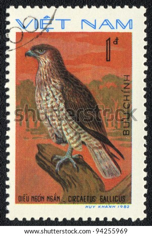 VIETNAM - CIRCA 1982: A stamp printed in VIETNAM shows Short-toed Snake Eagle (Circaetus gallicus), from series bird of prey, circa 1982