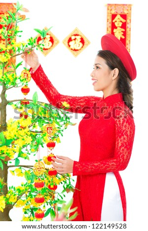 Vietnamese girl decorating apricot tree for traditional spring festival