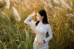 Vietnamese girl holding a reeds Flower, The Ao dai ( long-dress Vietnamese) is traditional costume of Vietnamese woman