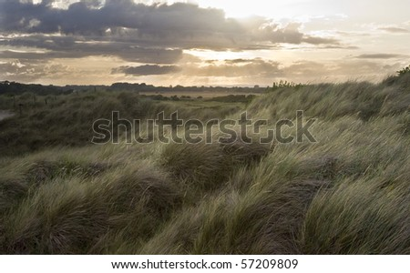 View across grassy sand dunes into sunset