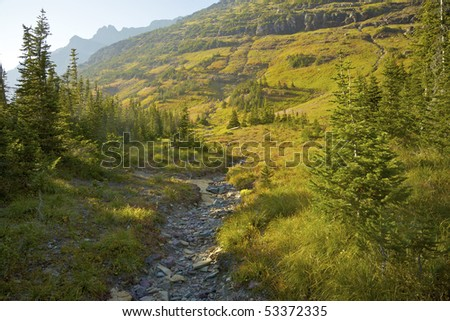 View along a trail near Hidden Lake, Glacier National Park, Montana, United States.