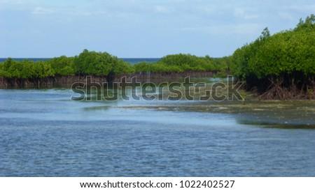 view at bagunbanua island in...