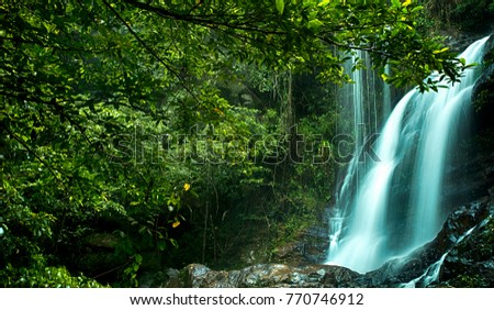View at Bukit Bertangga Waterfall, the beautiful waterfall in deep forest at Pahang, Malaysia #770746912