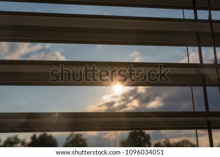 View between blinds in warm sunlight