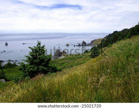 View from a green grassy hillside over the ocean while a fog bank rolls in