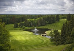 View from a height over a golf course fairway.