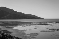 View from a hilltop looking out over the Coral Sea at low tide under a clear sky, rendered in monotone