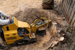 View from above on a yellow stump cutter equipped with tracks. In milling machines, the head grinds a large strain of chips. Next to the milling cutter, a large pile of weeds from the freshly chopper