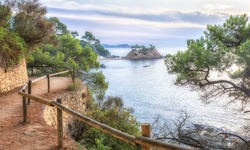 view from cliff to sea and beach in Spain, view from the rocks near the sea, rocks and beach view in Spain, sea landscape on the coast path, beach and rocks with pine trees on hills, trail by the sea