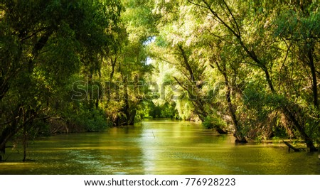 view from Danube Delta