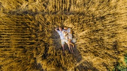 View from drone to happy young family lying and resting among yellow wheat field with baby.