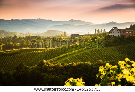 View from famous wine street in south styria, Austria on tuscany like vineyard hills. Tourist destination #1461253913
