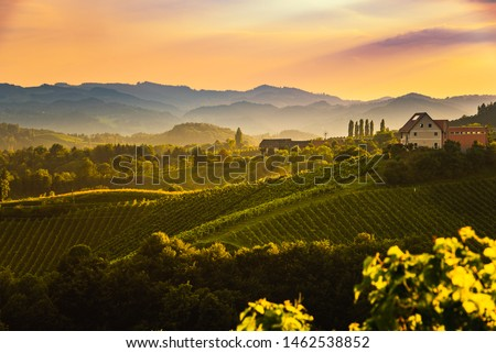 View from famous wine street in south styria, Austria on tuscany like vineyard hills. Tourist destination