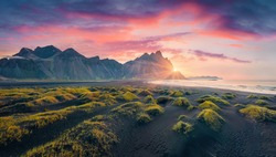 View from flying drone of Stokksnes cape with Vestrahorn (Batman Mountain) on background. Panoramic morning view of black sand dunes with grass on the top. Beauty of nature concept background.