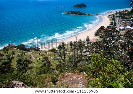 View from Maunganui Mountain. Tauranga, New Zealand.