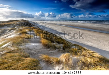 view from sand dune on north sea coast, Texel, Netherlands #1046169355